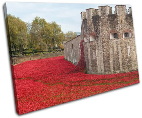 Tower of London Poppies City - 13-2358(00B)-SG32-LO